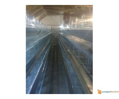Kavezi za koke nosilje - proizvodnja i prodaja kaveza za kok...