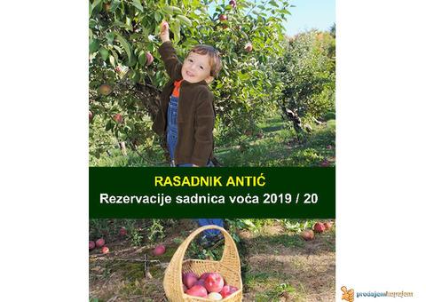 Rezervacija Sadnica Voća Jesen 2019 - Rasadnik Antić
