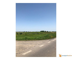 Plac od 1,2 ha na putu Novi Sad-Zrenjanin