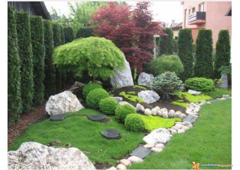 Dvorište, bašta, vrt - Baštovanske usluge