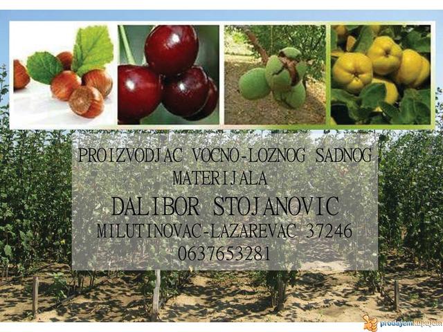 Rasadnik STOJANOVIC-VOCNE SADNICE - 2/4