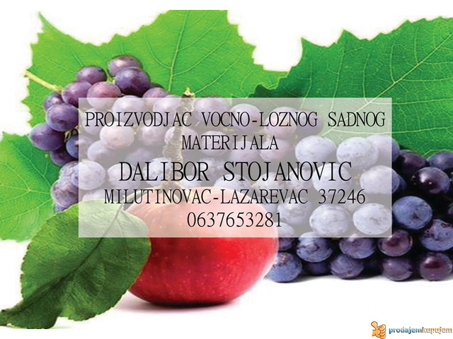 Rasadnik STOJANOVIC-VOCNE SADNICE - 3/4
