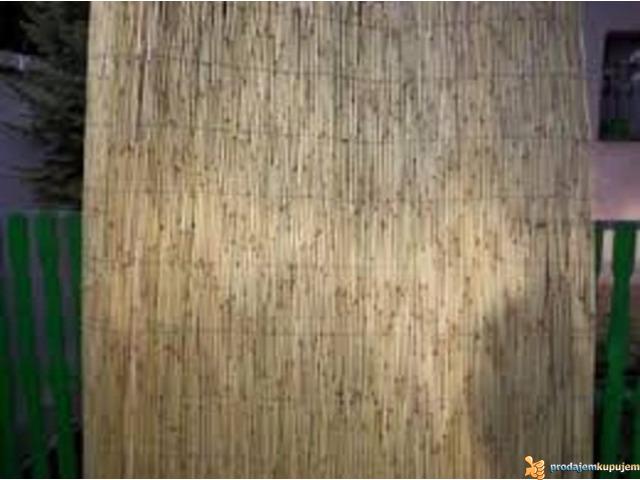 Trska pletena, proizvodi od trske - 3/4