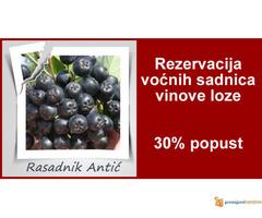 Sadnice voća... Super cena 30% popust