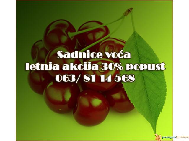 30% Popust - Voćne sadnice LETNJA AKCIJA - 1/2