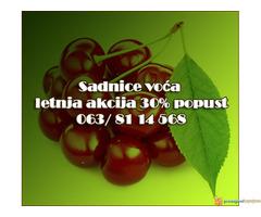 30% Popust - Voćne sadnice LETNJA AKCIJA