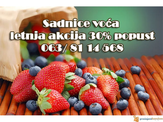 30% Popust - Voćne sadnice LETNJA AKCIJA - 2/2