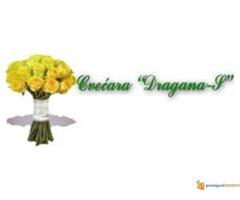 Cvecara Dragana S - Slika 6/6