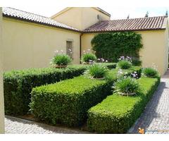 Hortikultura-Baštovanstvo (Obavljanje usluge uređenja i održavanja vrta) - Slika 3/7
